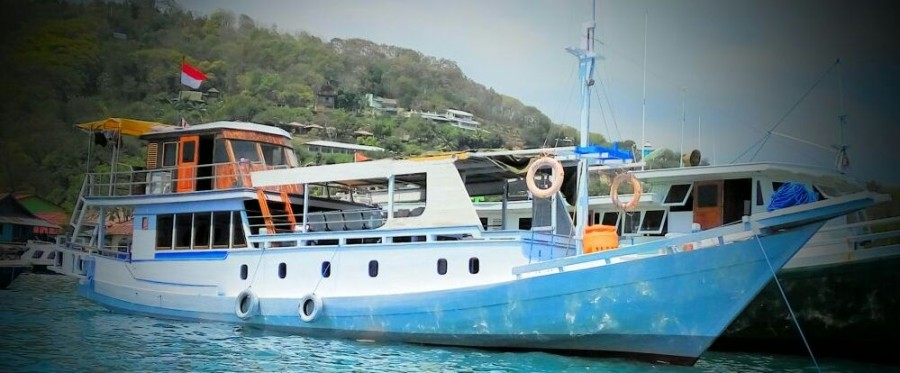 Komodo Island  Over Sea  4 days/ 3 night sharing from Lombok.